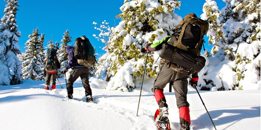 $99 -- Mount Rainier Full-Day Snowshoe Tour w/Lunch
