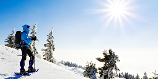 $179 -- Half-Day Snowshoe Tour for 4 in Park City, 55% Off