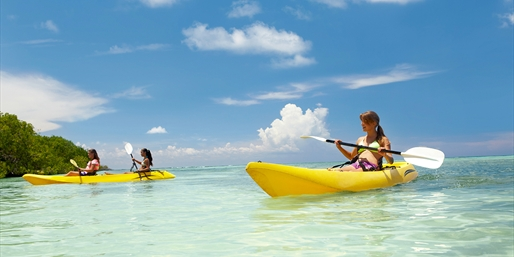 $20 -- Island Kayak Tour w/Post-Paddle Drink, Reg. $45