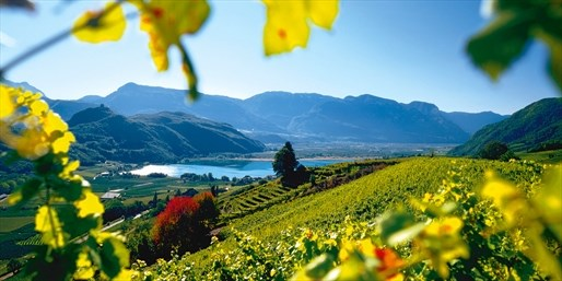 159 € -- Südtirol: Suite & Menüs im Wellnesshotel, -48%