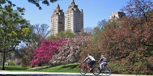 $9 -- Central Park: 2-Hour Bike Rental, Reg. $20