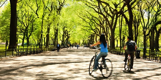$10 -- Bike Central Park thru Summer w/Ice Cream, Reg. $21