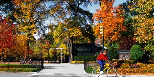 $22 -- Central Park Bike Tour through Fall, Reg. $45