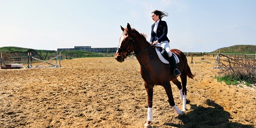 $29 -- Guided Horseback Riding or Rodeo Lesson, Reg. $60