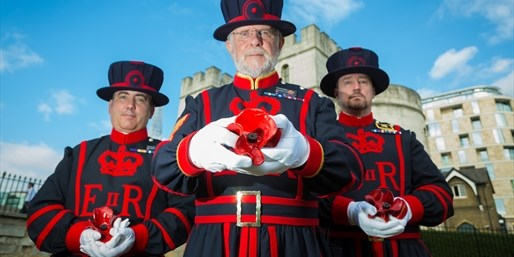 £160 -- Tower of London WWI 'Poppies' Tickets & Hotel