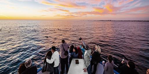 $12 -- Newport Sunset or Evening Cruise w/Drink, Reg. $30