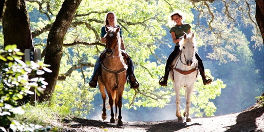 $19 -- Scenic Spring Horseback Ride for 2, Reg. $35