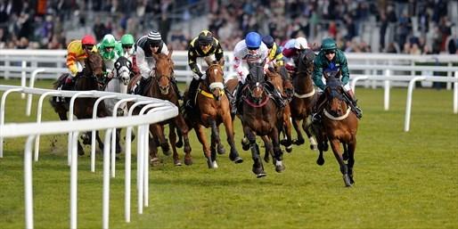 £15 -- Ascot Racecourse Ticket & Kids Go Free