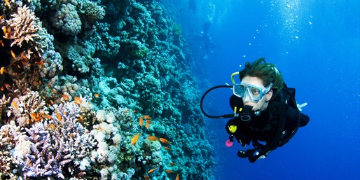 $199 -- Open-Water Scuba Certification Course, Reg. $575