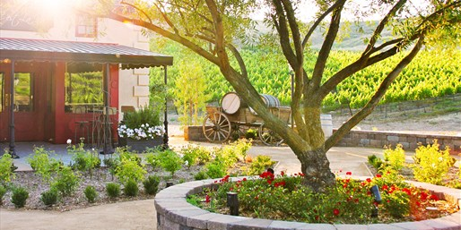 $39 & up -- Europa Winery: Vineyard Picnic & Wine Experience