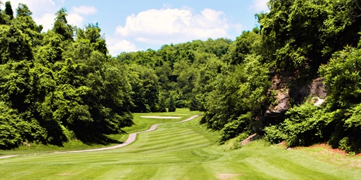 $29 -- Grand View Golf w/Lunch through October, Reg. $65