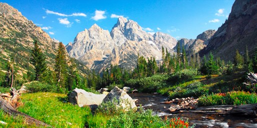 $99 -- Jackson Hole Inn incl. Weekends, Reg. $170