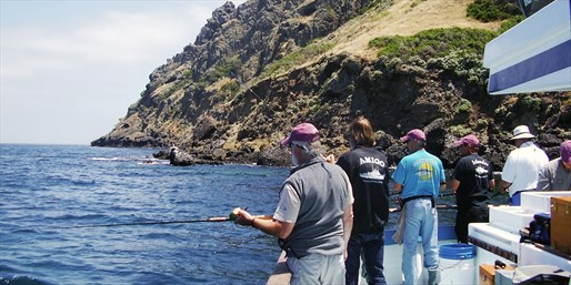 $39 -- Deep Sea Fishing Day & Lunch Off Catalina, Reg. $82