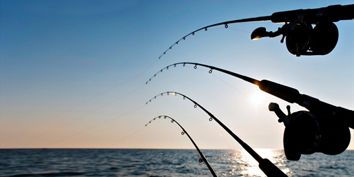 $25 -- Deep Sea Fishing Trip w/Gear & Lunch, 55% Off