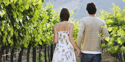 Dallas: $29 -- Sunset Winery: VIP Tour for 2 w/Snack Board, Reg. $60