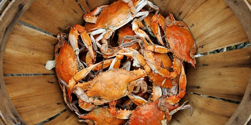 $49 -- Fresh Blue Crab & Seafood Shipped Nationwide