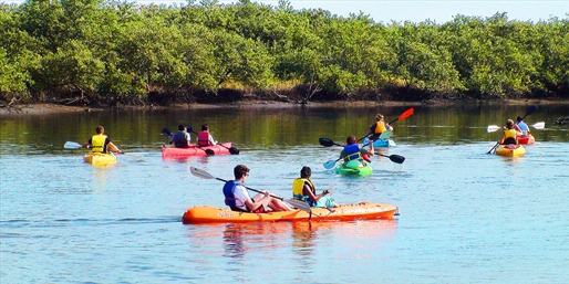 $35 -- New Smyrna Guided Nature Kayak Tour for 2, Save 50%
