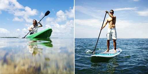 $29 -- Siesta Key: Kayak or Paddleboard Tour, Half Off