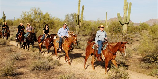 Scenic Horseback Ride at MacDonald's Ranch for 1-4, 50% Off