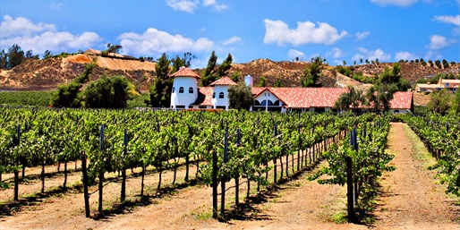 $39 -- Temecula Winery: Tour, Tastings & Class, Reg. $111