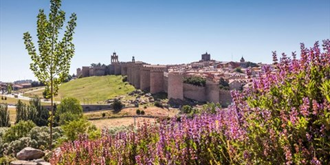 118€ -- 3 días y cena en 4* frente a murallas de Ávila, -79€