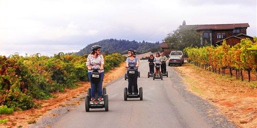 $49 -- Healdsburg: Segway Tour of Russian River Vineyards
