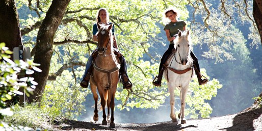 $30 -- Spring Horseback Ride on the Trans-Canada Trail