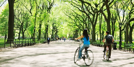 $9 -- Central Park Bike Rental w/Snack & Drink, 50% Off