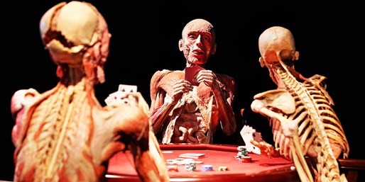 $20 -- 'Bodies Revealed' Exhibit in Niagara Falls, Reg. $35