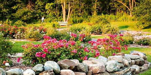 $12 -- Minnesota Landscape Arboretum Day Pass for 2, 50% Off