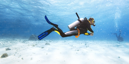 $99 -- Learn to Scuba Dive off the Sonoma Coast, Reg. $200