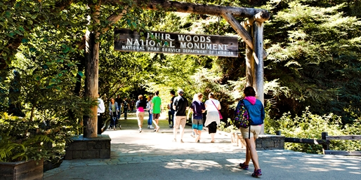 $29 -- Muir Woods Sightseeing Trip from SF, Reg. $54