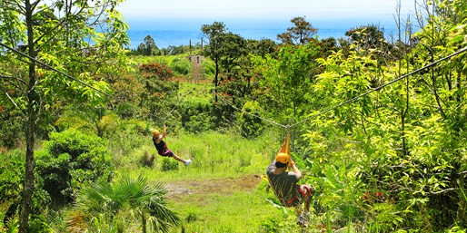 $79 -- Big Island: Zip Line & Garden Pass at Botanical World