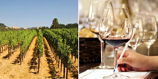 $19 -- Acclaimed Simi Winery: Tour & Tasting for 2, Reg. $38