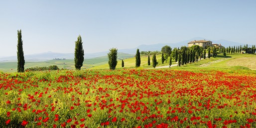 £96pp -- Tuscany 7-Night Stay w/Wine Tasting & Cooking Class