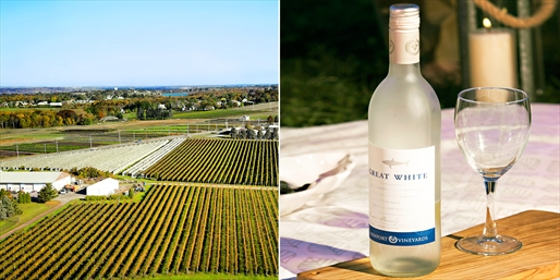 $15 -- Award-Winning Newport Vineyards: Tour & Tasting for 2
