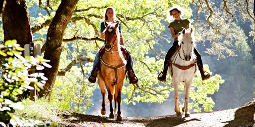 $45 -- Temecula: 90-Minute Horseback Trail Ride, Half Off