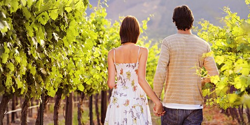 $29 -- Napa or Sonoma Wine Passport for 2, Reg. $59