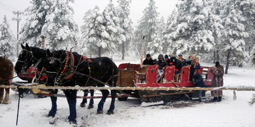 Scenic Sleigh Rides for 1-4 w/Cocoa, Save up to 50%