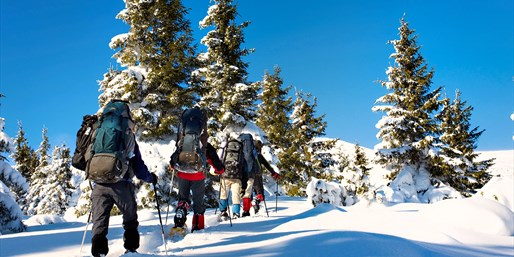 $65 -- White Mountains: Half-Day Snowshoe Tour, Reg. $119
