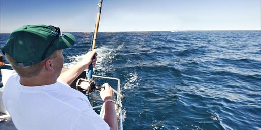 Full-Day Fishing Trips w/Gear on Lake Erie, Half Off