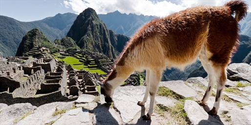 10-Nt. Machu Picchu and Galapagos Adventure, From $2,970