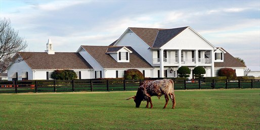 $85 -- Texas: TV Hit 'Dallas' Ranch Experience w/Breakfast