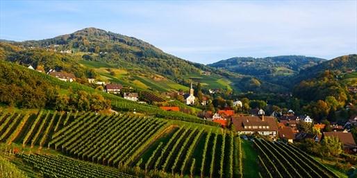 99 € -- Auszeit in Weinregion mit Dinner & Wellness, -40%