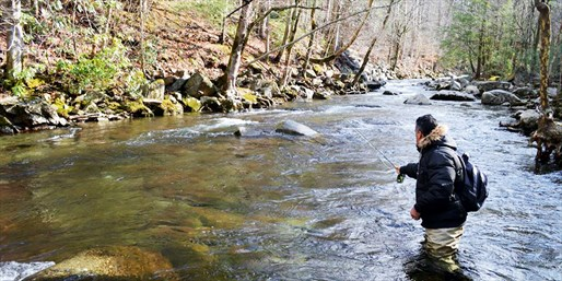$189 -- Guided Fly Fishing Trip for 2 w/Lunch, Reg. $350