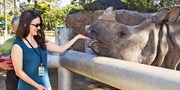 $41.50 -- San Diego Zoo: All-Day Passes for Adults & Kids