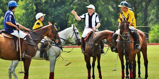 $49 -- Polo Lesson for Beginners w/Match Ticket, Reg. $110
