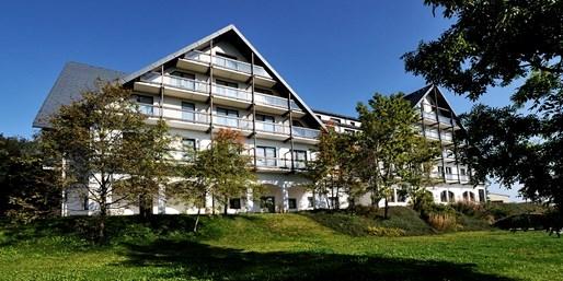 69 € -- Junior-Suite im Erzgebirge mit Halbpension, -60%