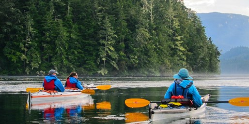 $375 -- 3-Day Wildlife Viewing Kayak Adventure, Save $309