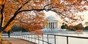 Washington, D.C.: Capital Cheer & Deals, Save 65%